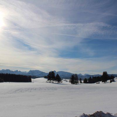Landschaft_Ferienhof_Hackenberg10