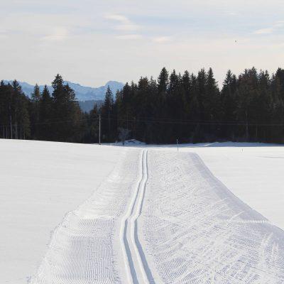 Landschaft_Ferienhof_Hackenberg12